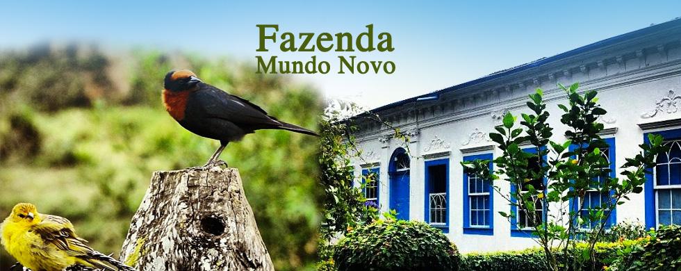 http://www.fazendamundonovo.com.br/sitenovo/sites/all/themes/fazendamundonovo/images/topo.jpg